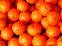 Halos Clementines